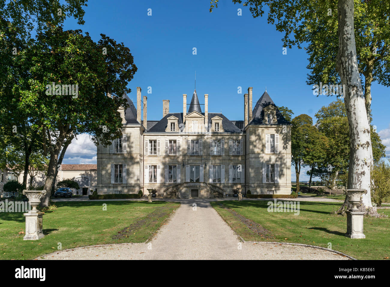 Chateau Latour, vineyards in Medoc, Bordeaux, Gironde, Aquitaine, France, Europe, - Stock Image