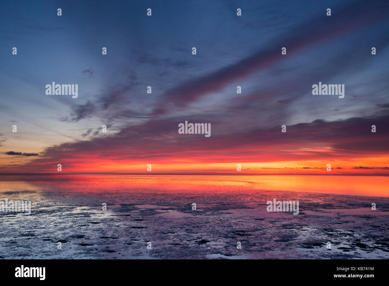 Sun rises over the mudflat in De Schorren nature reserve, The Netherlands, Noord-Holland, Texel - Stock Image
