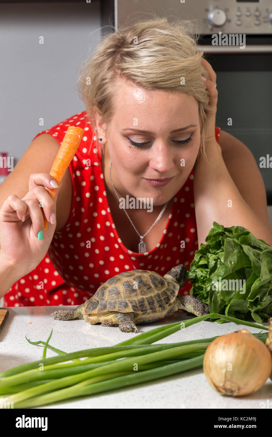 Girl eating carrot while tortoise looks up - Stock Image