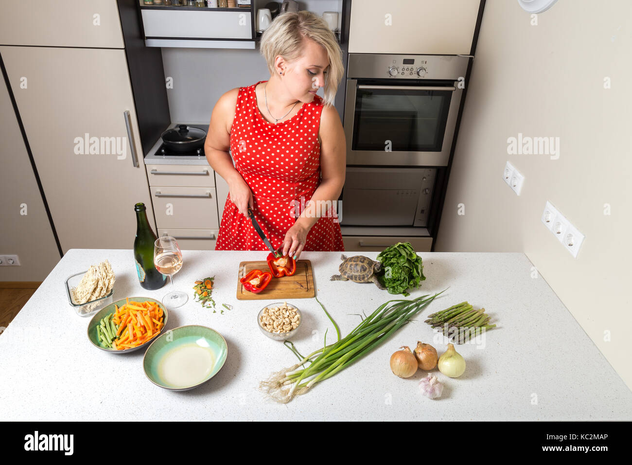 Woman cutting paprika and looking over shoulder of tortoise eating salad - Stock Image