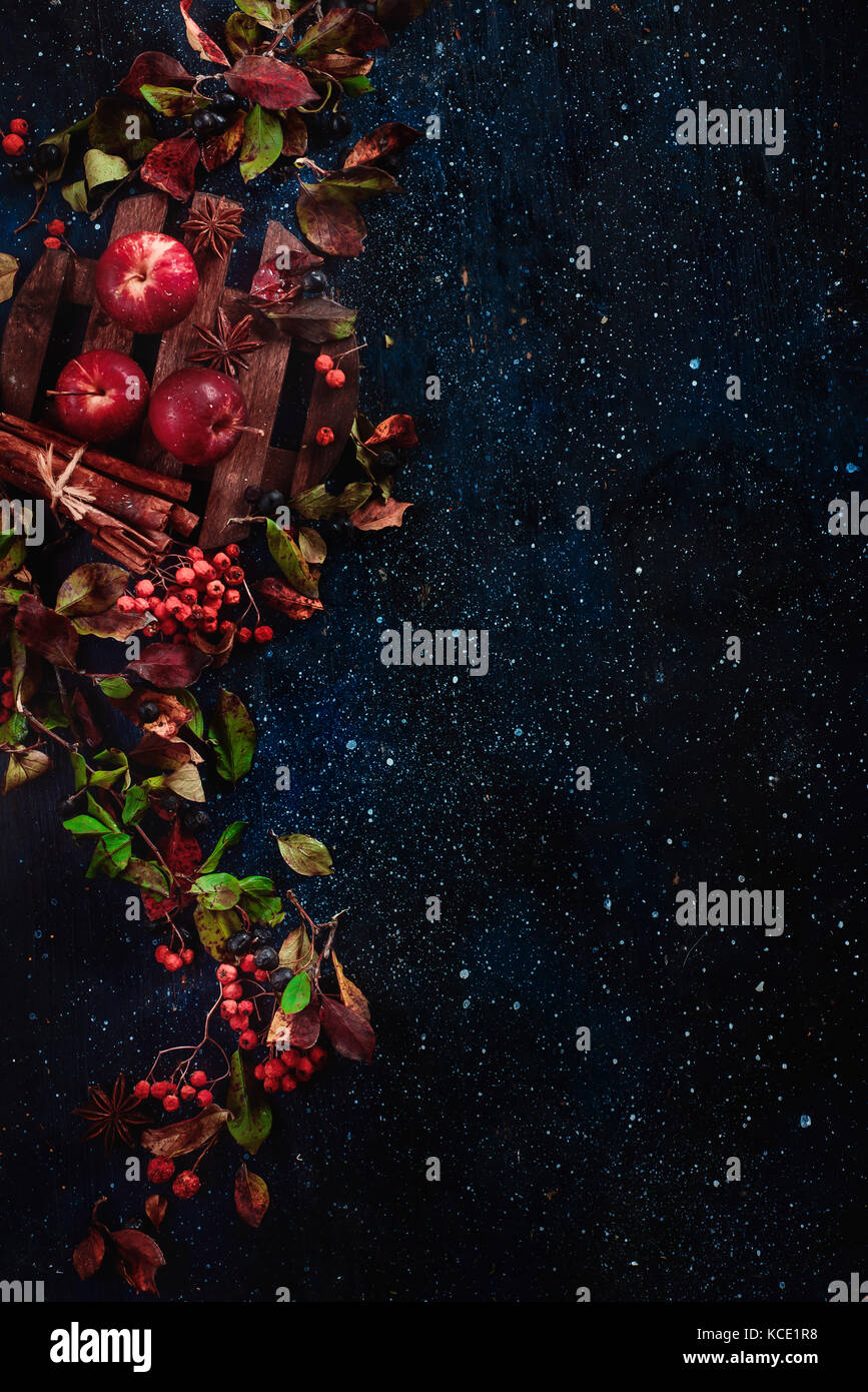 Dark floral background with little apples, autumn leaves, berries, rowan, cinnamon and ingredients for autumn hot - Stock Image