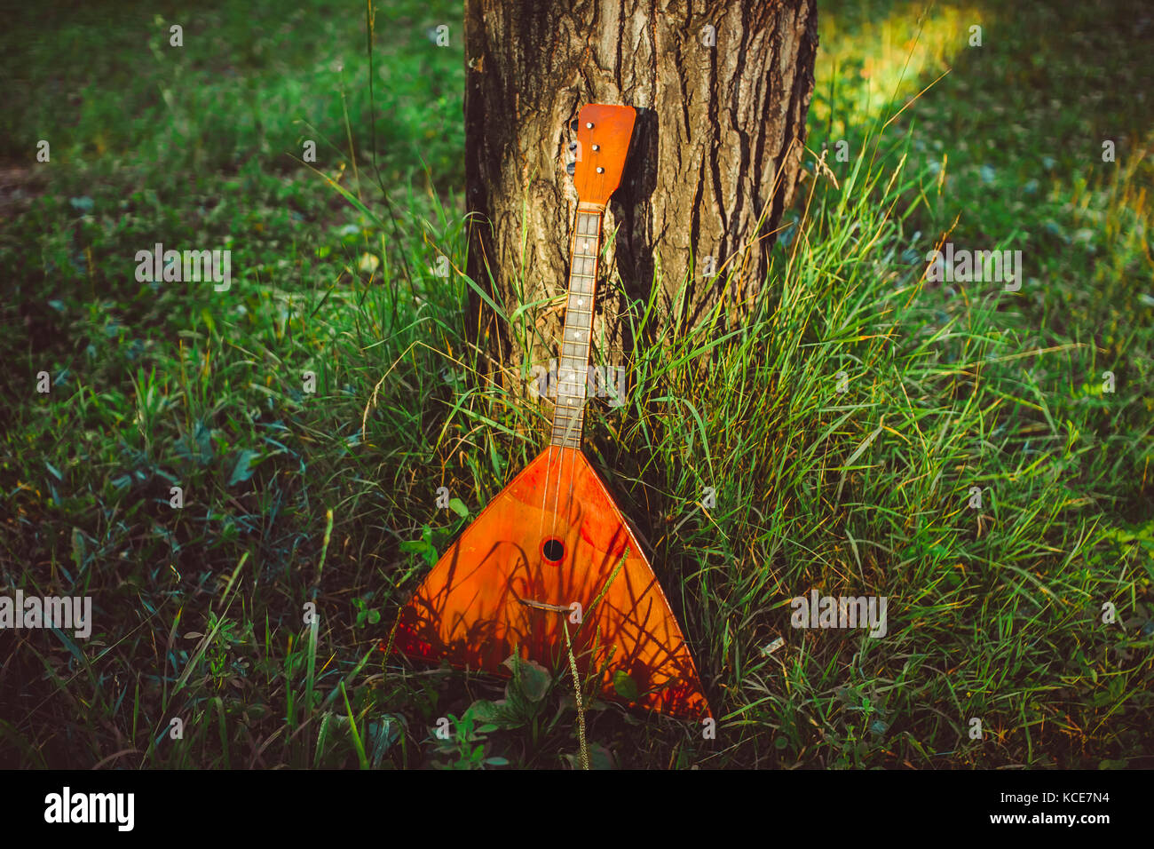balalaika is in the forest near the tree - Stock Image