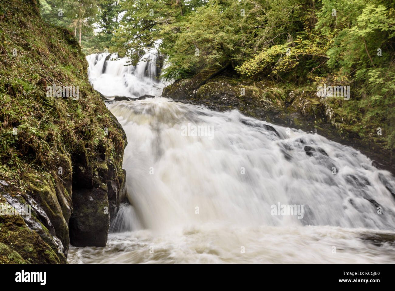 betws y coed men Fairy glen is a secluded gorge on the conwy river & swallow falls - betws-y-coed, north wales.