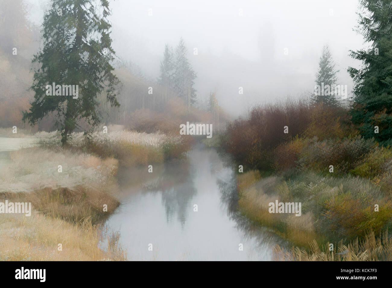 Canada, British Columbia, Centennial Park, 100 Mile House, Cariboo, Bridge Creek, abstract, landscape, autumn, fall - Stock Image