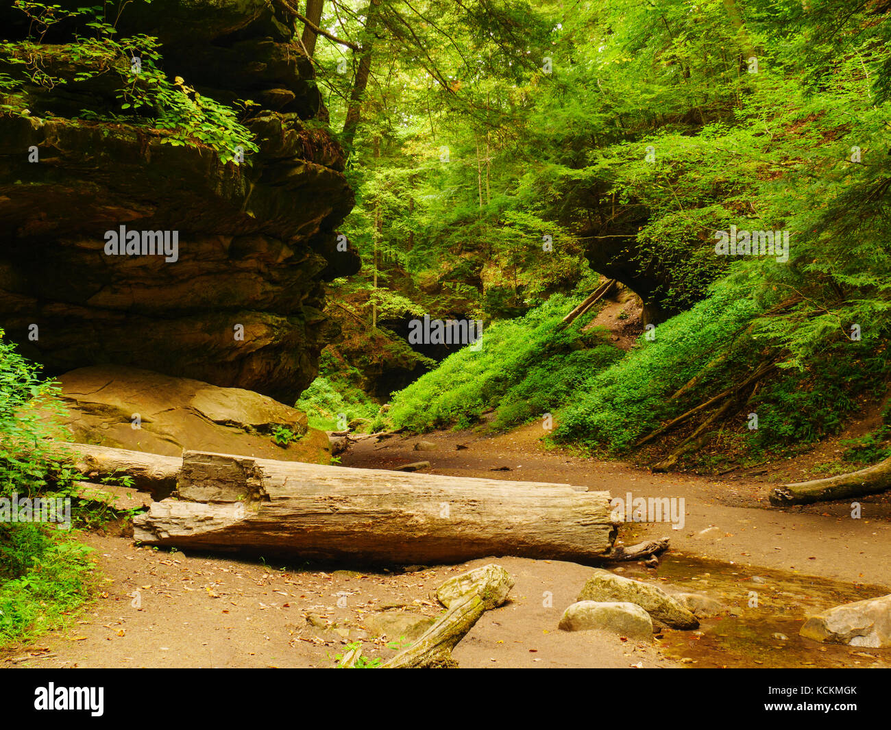 rocky-hollow-turkey-run-state-park-india