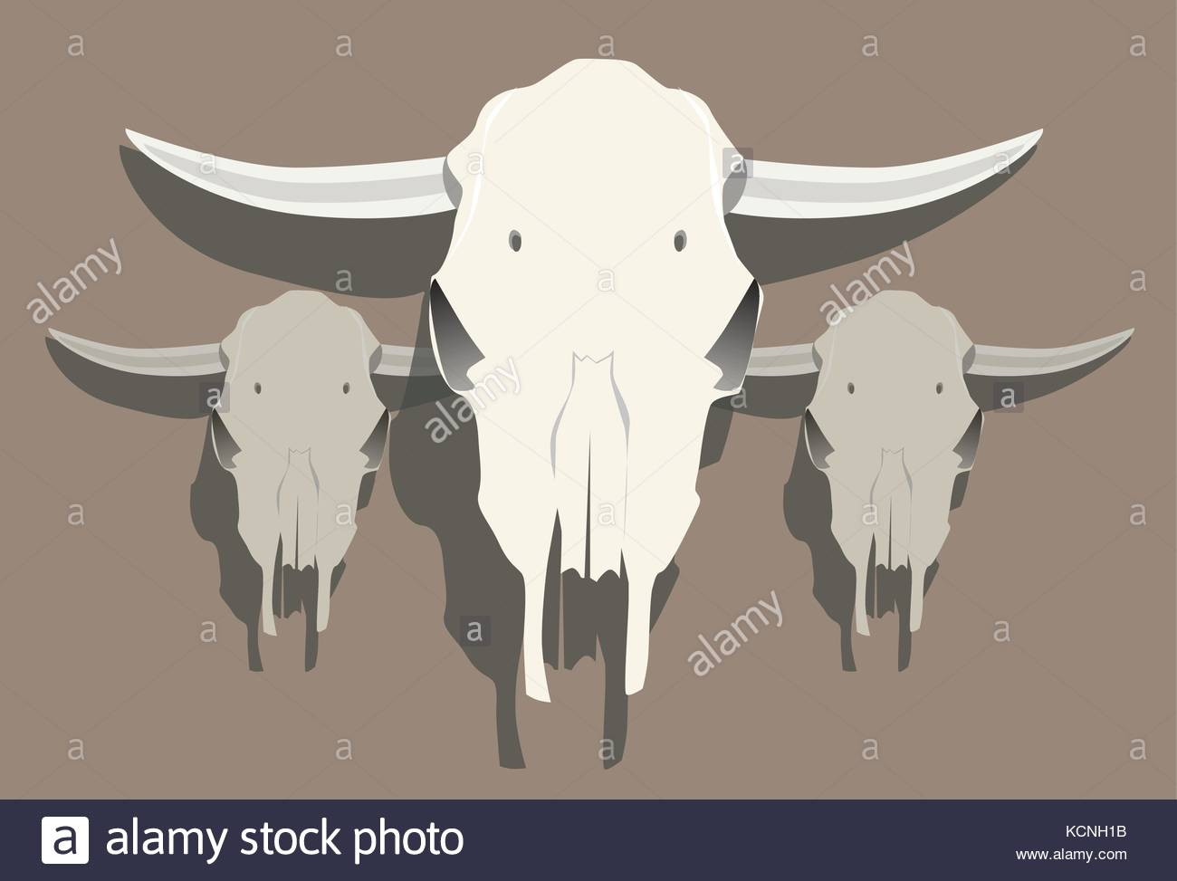 Group of Cow Skulls Illustration 1 - Stock Image