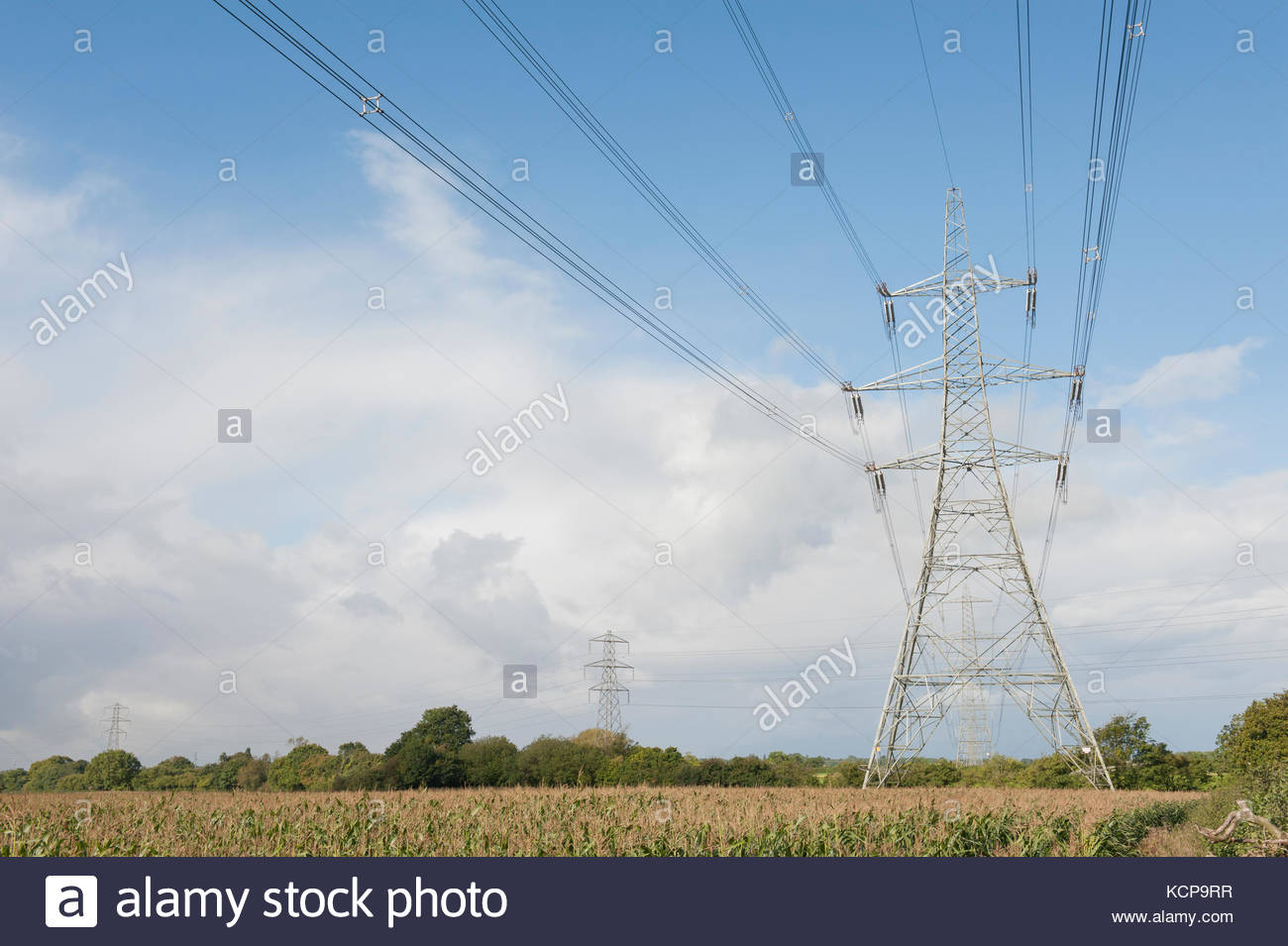 Electricity Voltage In London England
