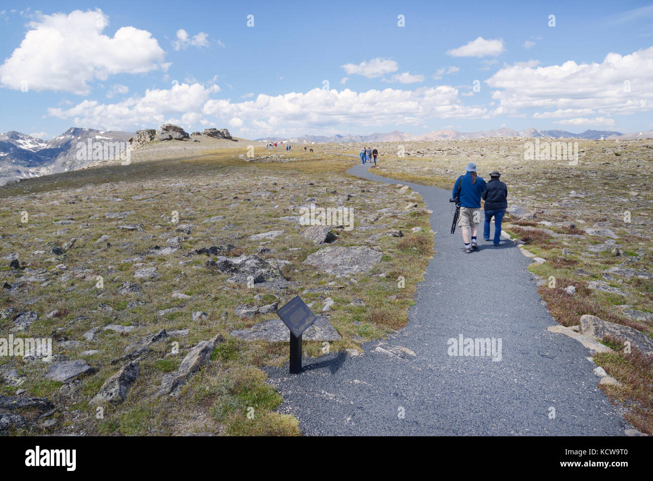 Tundra Communities Trail, off of Trail Ridge Road, Rocky Mountain National Park, Colorado - Stock Image