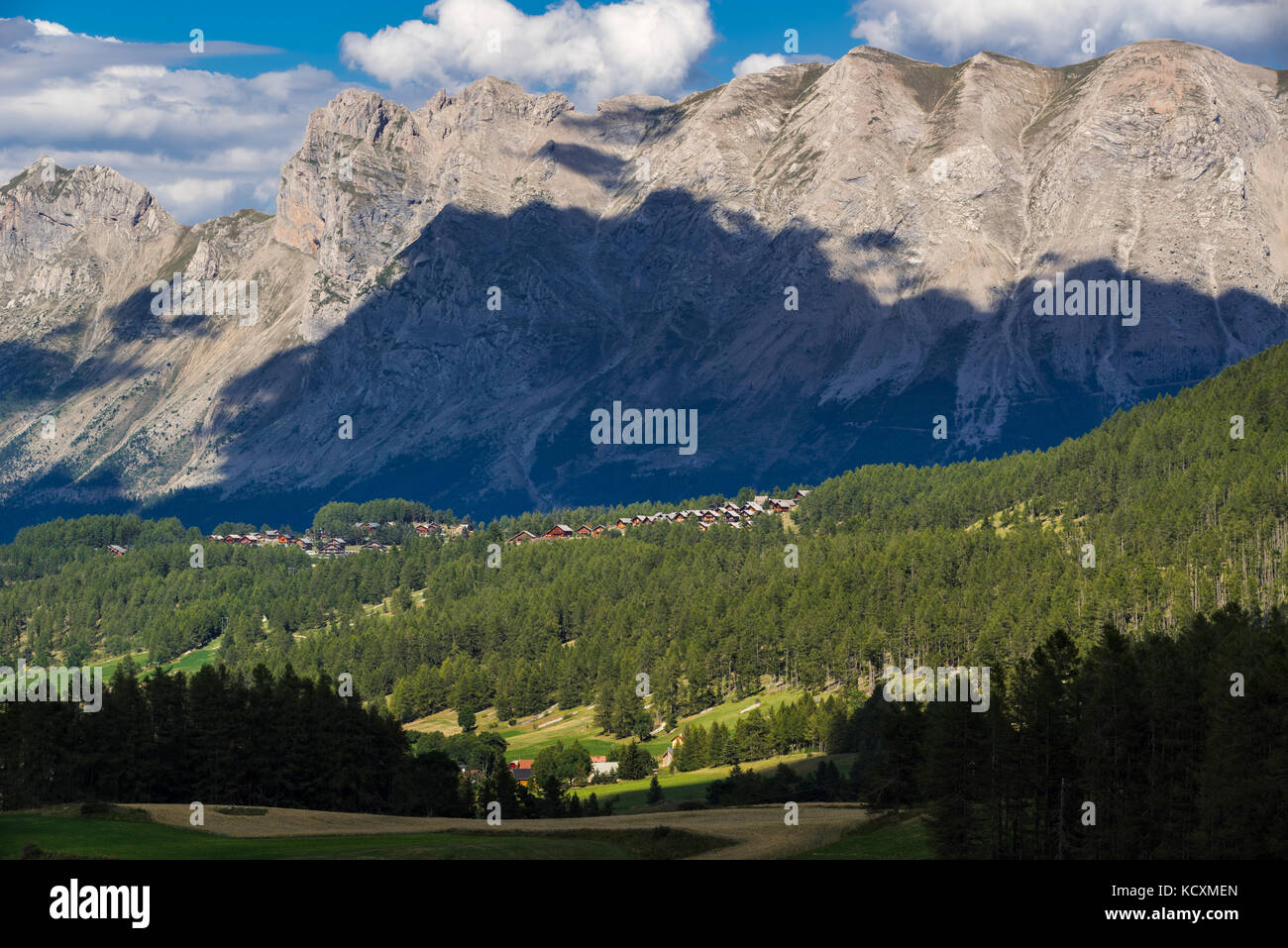 Loup stock photos loup stock images alamy for Hautes alpes