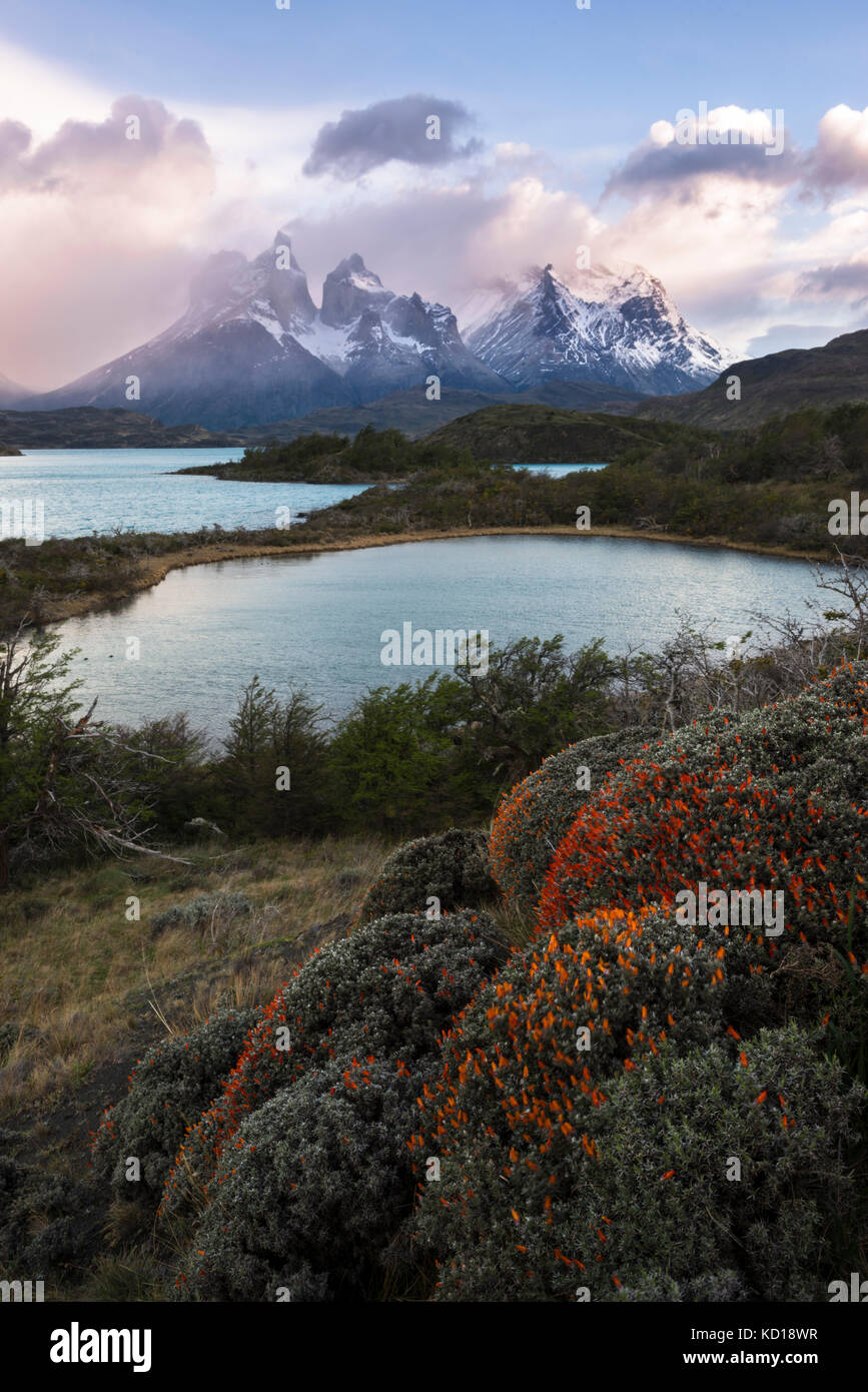 the-landscape-of-torres-del-paine-nation