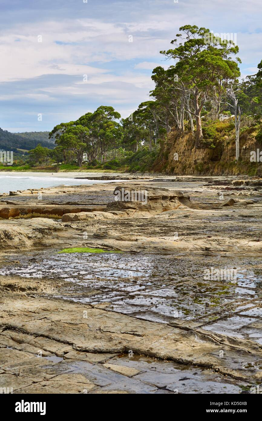 Sea and tessellated pavement stock photos sea and for Landscaping rocks tasmania