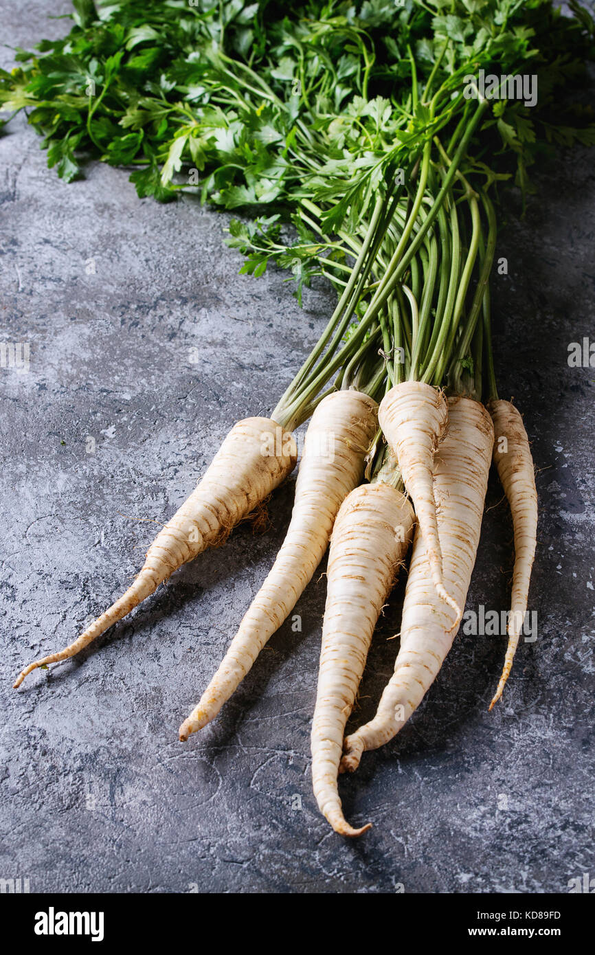 Bundle of fresh organic parsnip with haulm over gray texture background. - Stock Image