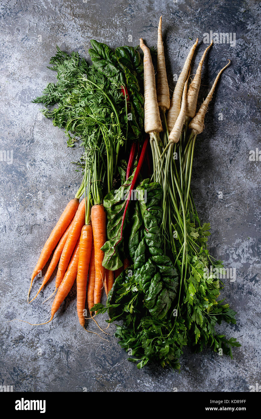 Bundle of fresh organic carrot, parsnip with haulm and chard mangold over gray texture background. Top view with - Stock Image
