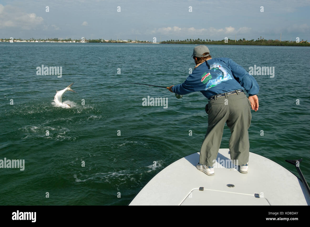 A fisherman fights a jumping tarpon while fly fishing in for Florida free fishing days