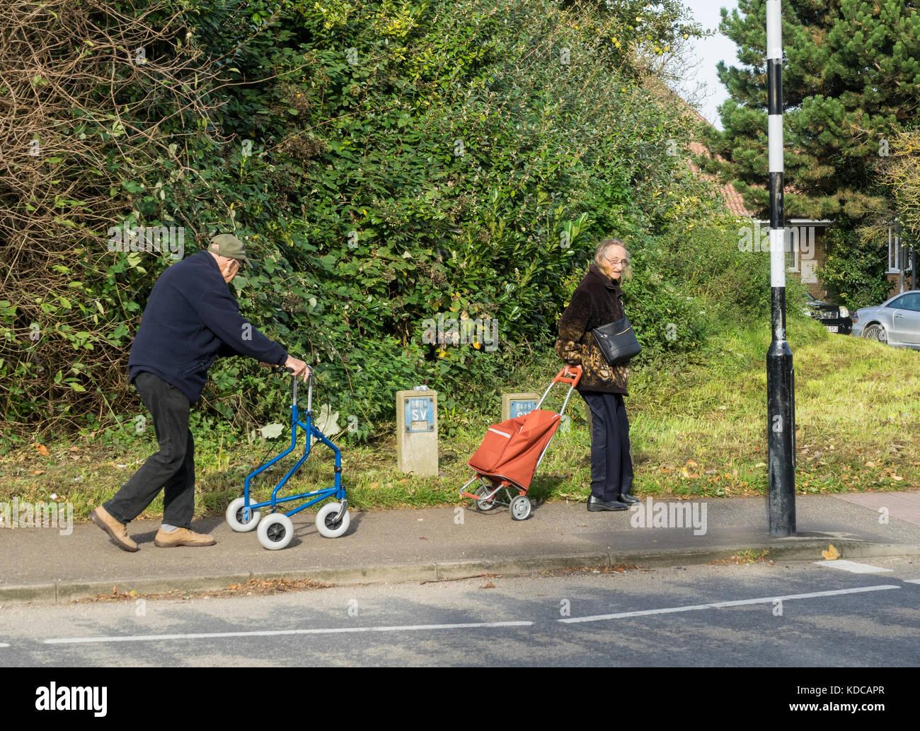 elderly-couple-with-shopping-KDCAPR.jpg