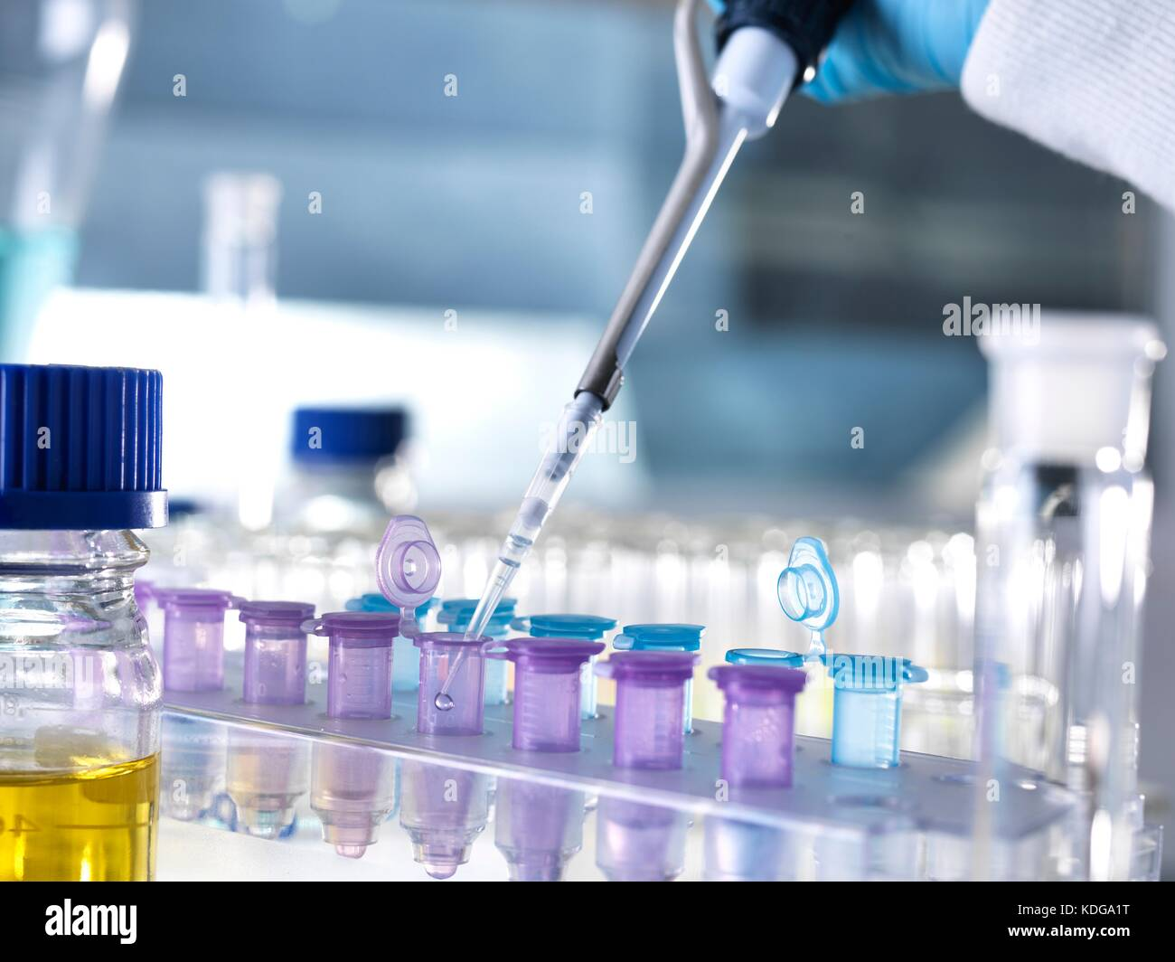 biocem experimnt This website is dedicated to providing powerful software for research in biochemistry, molecular biology and for drug development.