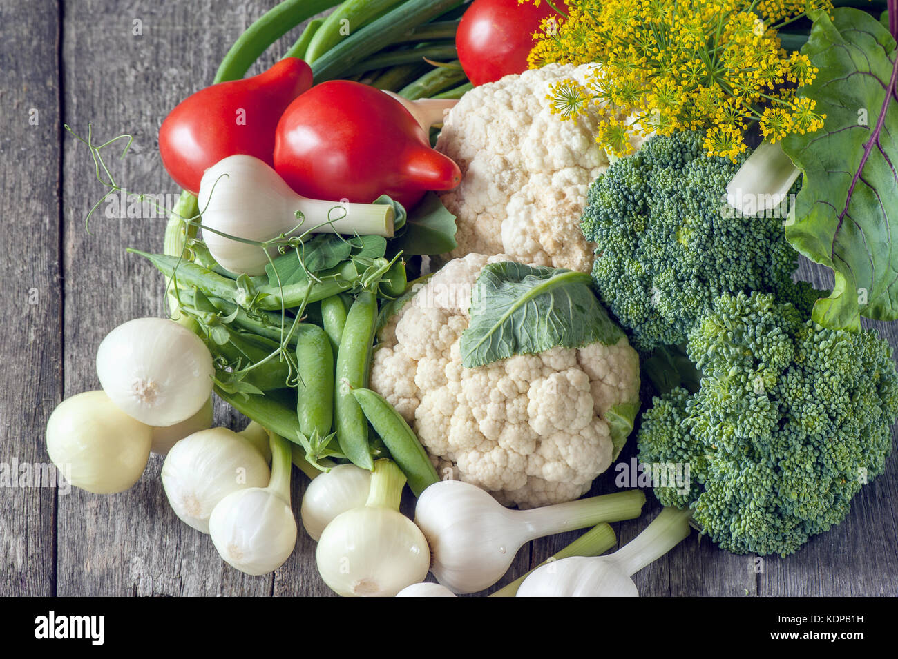 The farmers harvest different vegetables in late summer in the organic garden. Healthy, sustainable food. Autumn. - Stock Image