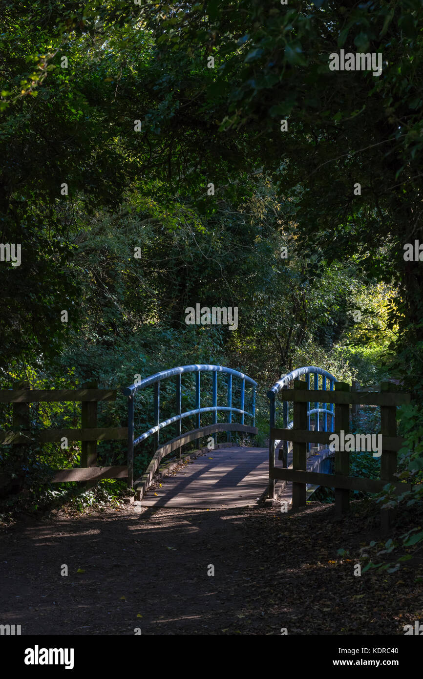 footbridge-over-water-in-park-KDRC40.jpg