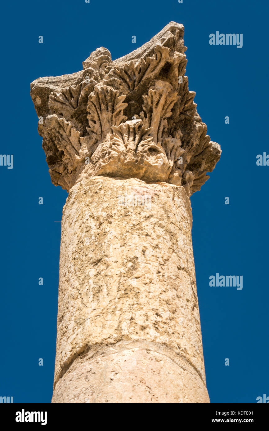 Corinthian column stock photos corinthian column stock for Acanthus leaf decoration