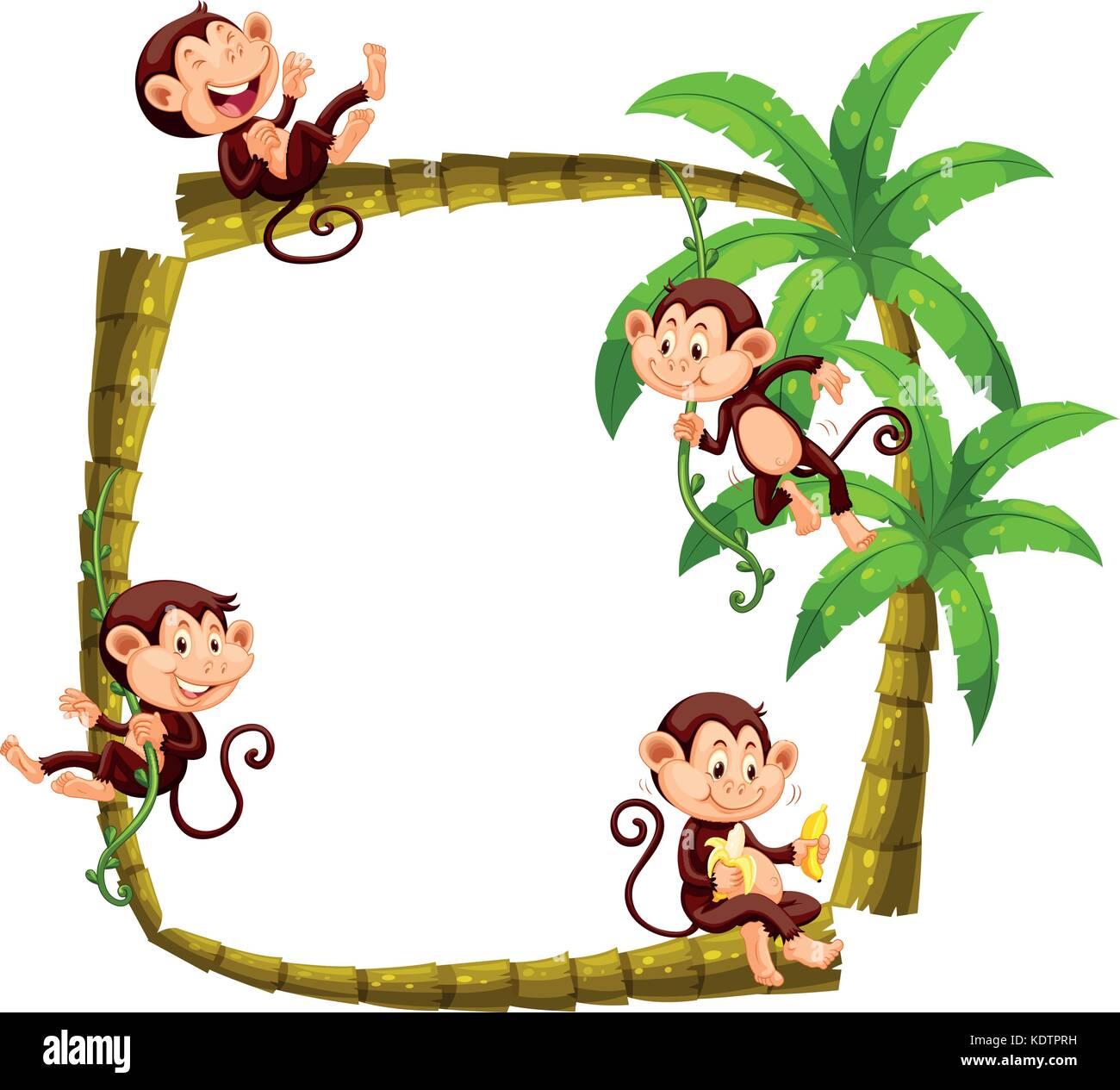 graduate monkey  graduatemonkey