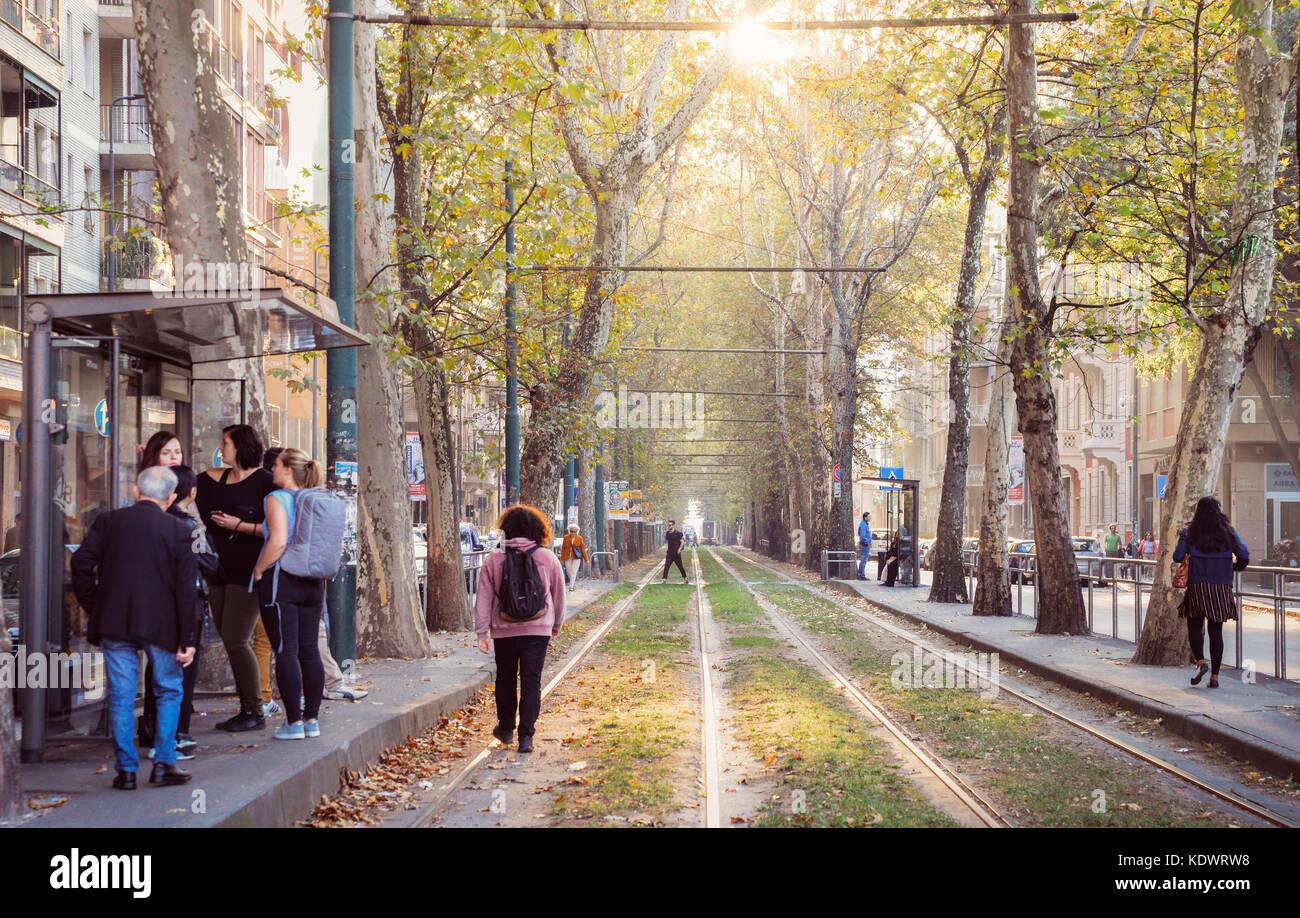 A busy tram stop and tree-lined path of rail lines in Milan, Lombardy, Italy Stock Photo