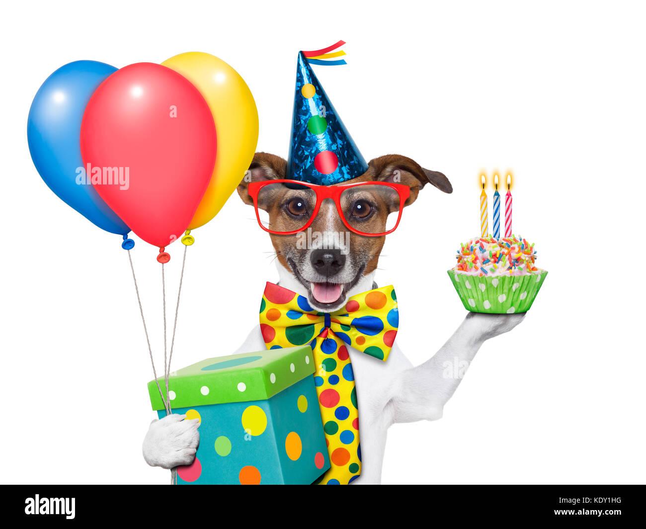 Поздравление с днём рождения тимофею 1 год