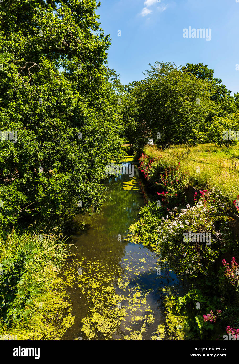 Tranquil stream at Sissinghurst Gardens, Kent, UK - Stock Image