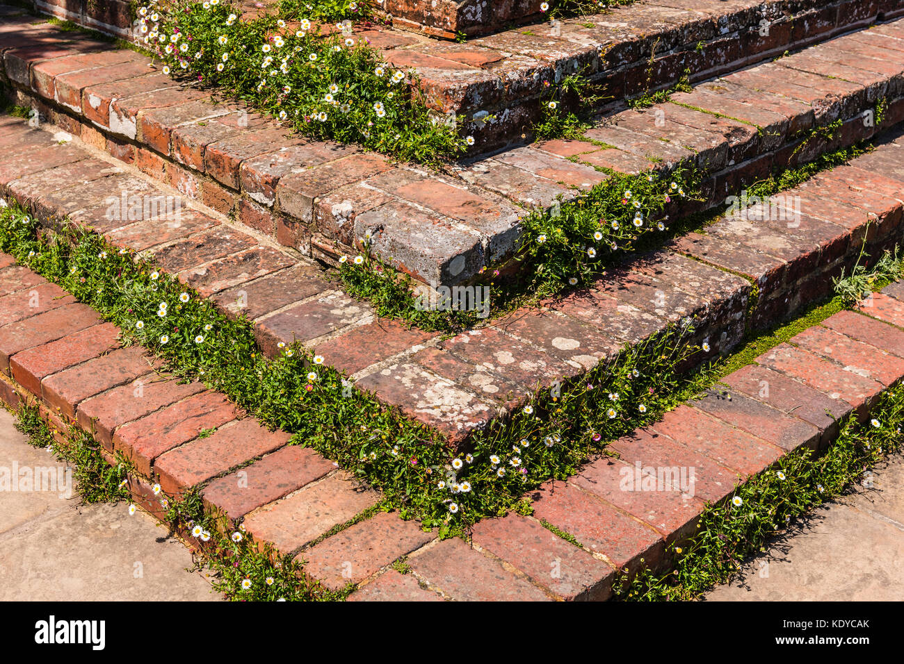 Brick steps at Sissinghurst Gardens, Kent, UK - Stock Image