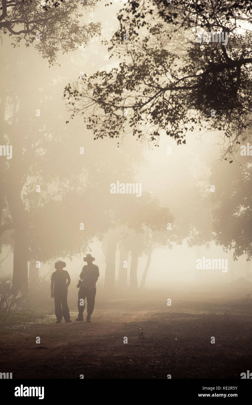 Two tourists exploring a misty morning in North Pantanal, Brazil - Stock Image