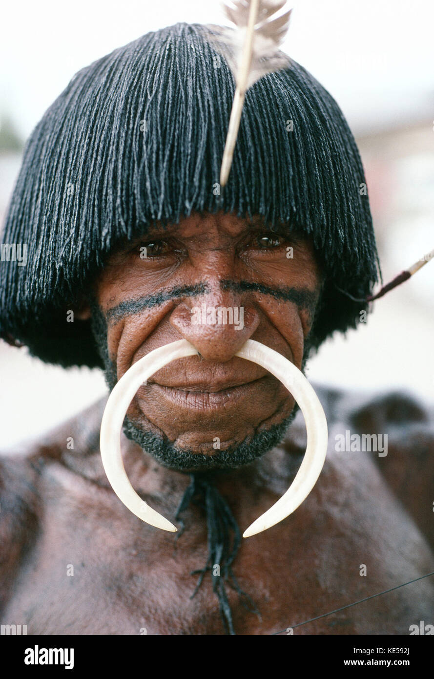 Indonesia. Irian Jaya. Portrait of Dani tribesman. - Stock Image