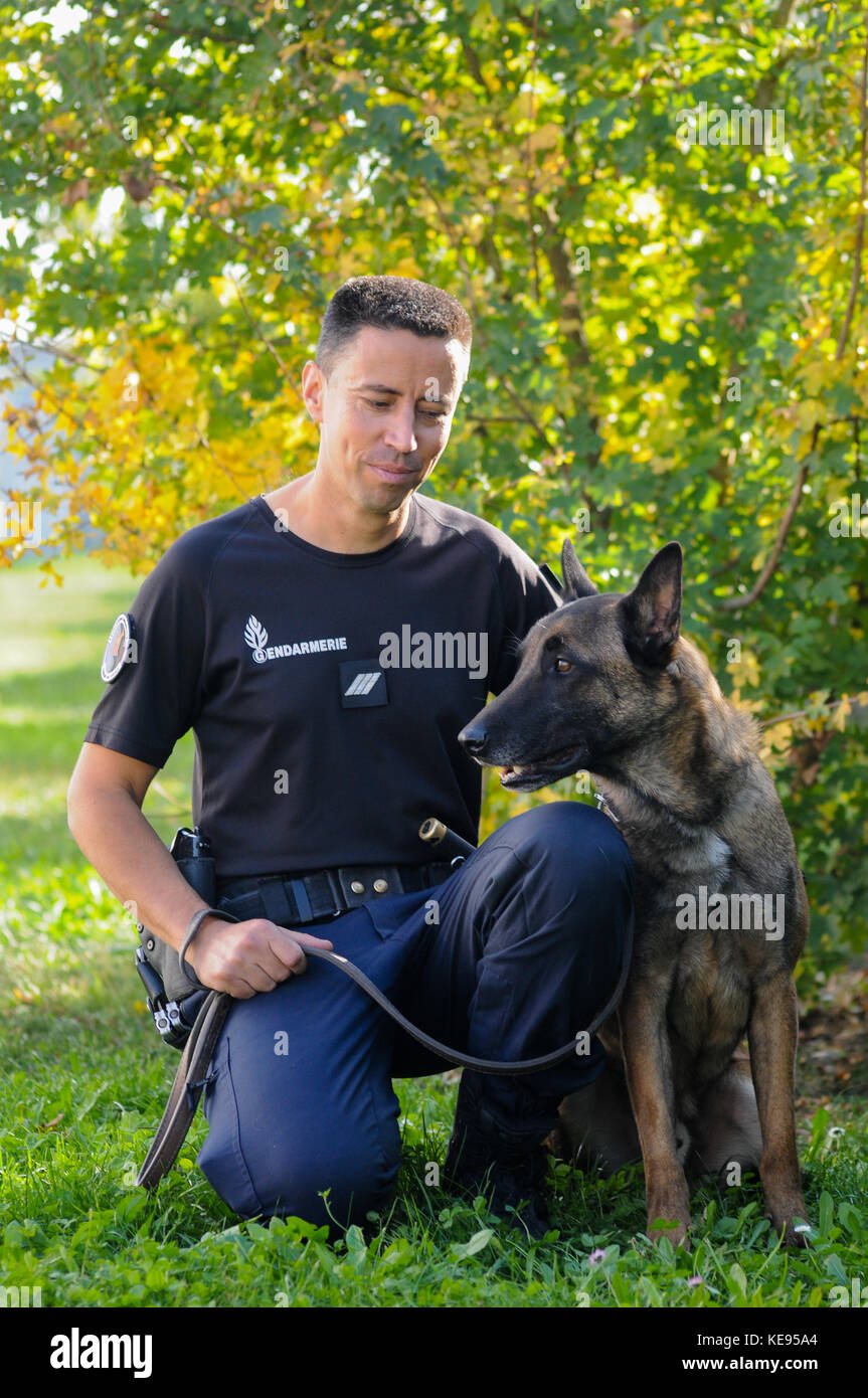 Dog Training Camp Usa