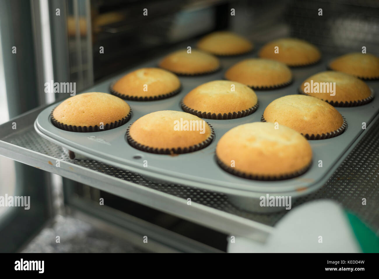 Cupcakes coming out of the oven - Stock Image