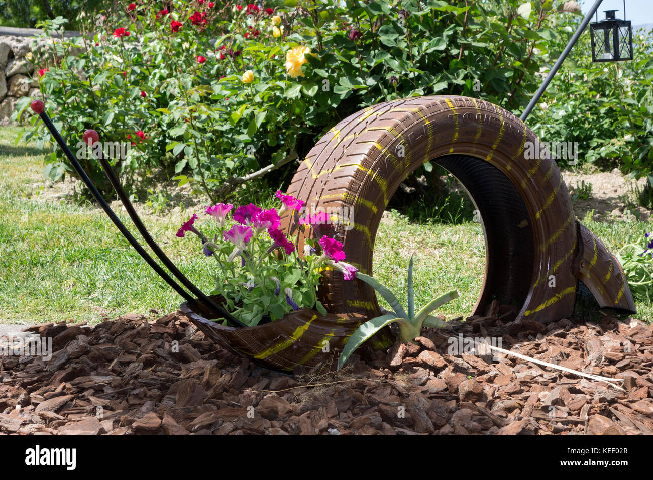 Recycled tyre used as flowerpot - Stock Image