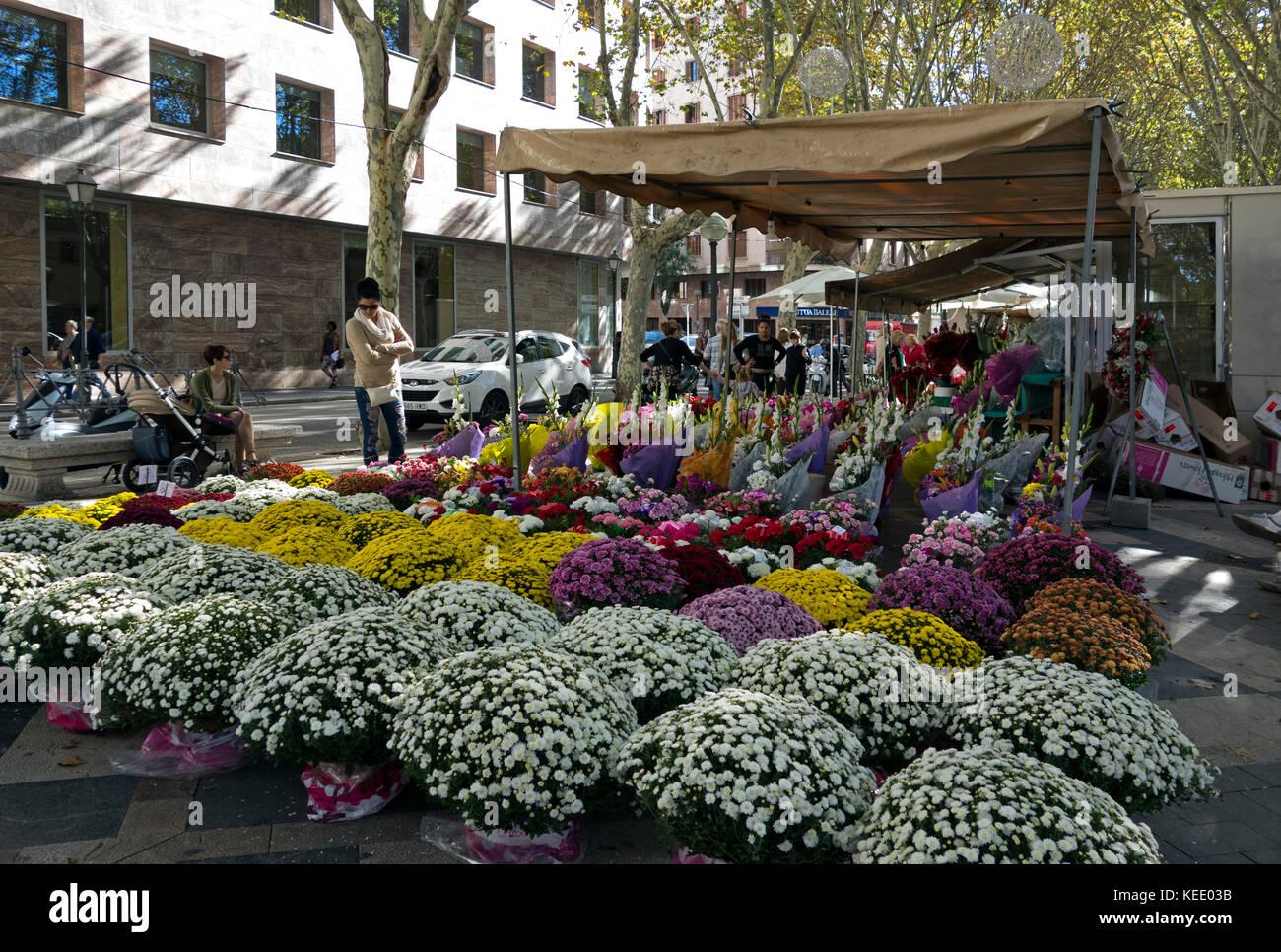Street flowers shops.La Rambla.Palma de Mallorca.Mallorca Island.Spain - Stock Image