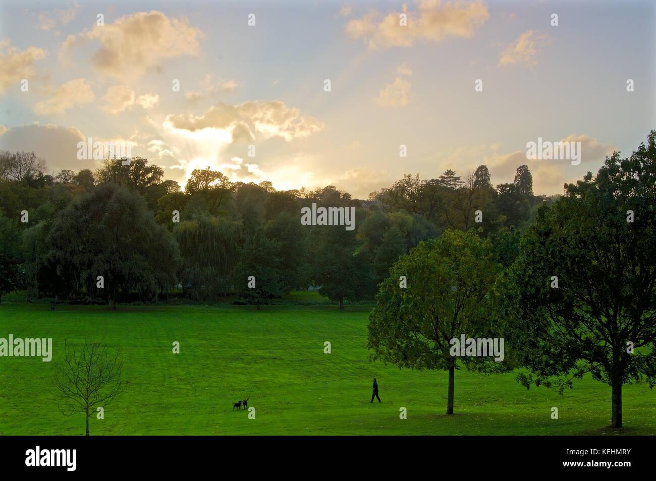 Hempstead Dog Park