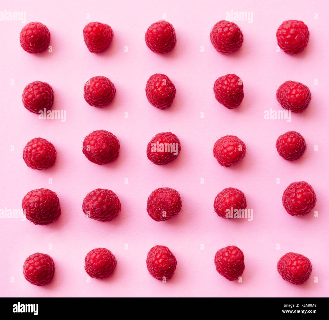 A beautiful selection of freshly picked ripe red raspberries on trendy pink background. Colorful diet and healthy - Stock Image