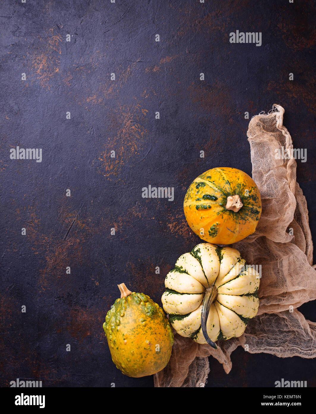 Decorative pumpkins on rusty background  - Stock Image