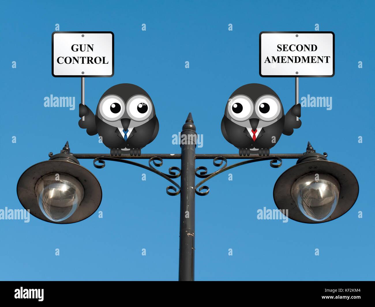 gun control and the second amendmet