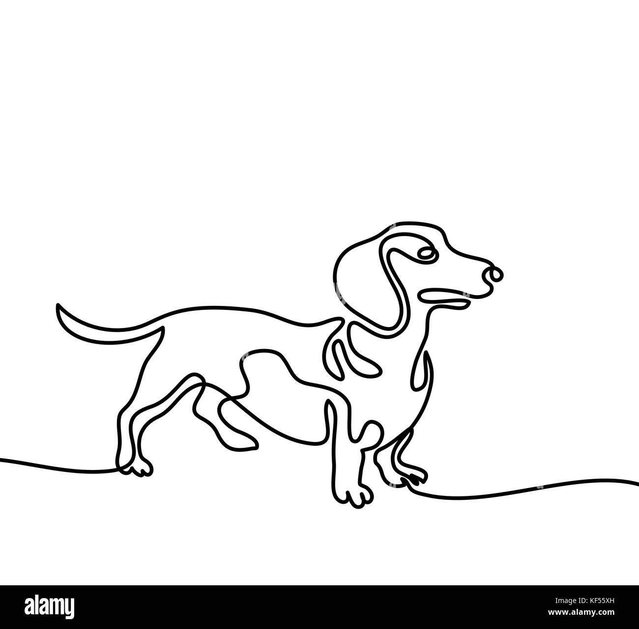 Line Drawing Dachshund : Dachshund dog drawing stock photos