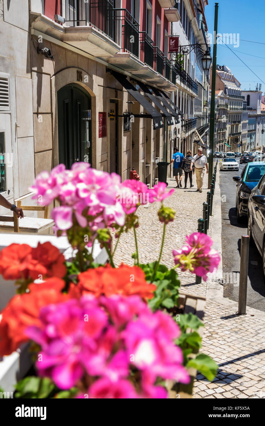 Lisbon Portugal Bairro Alto Rua da Misericordia street scene flowers geraniums city skyline residential apartment - Stock Image
