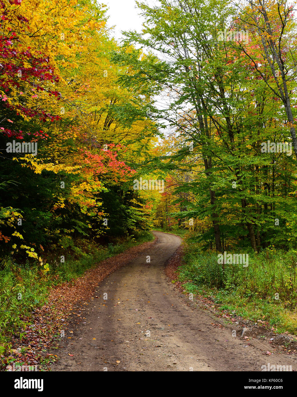 a-winding-dirt-road-in-the-adirondack-mo