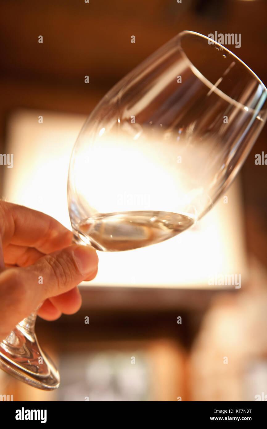 USA, California, Sonoma, enjoying a glass of white wine in the tasting room at Bartholomew Park winery and vineyard - Stock Image