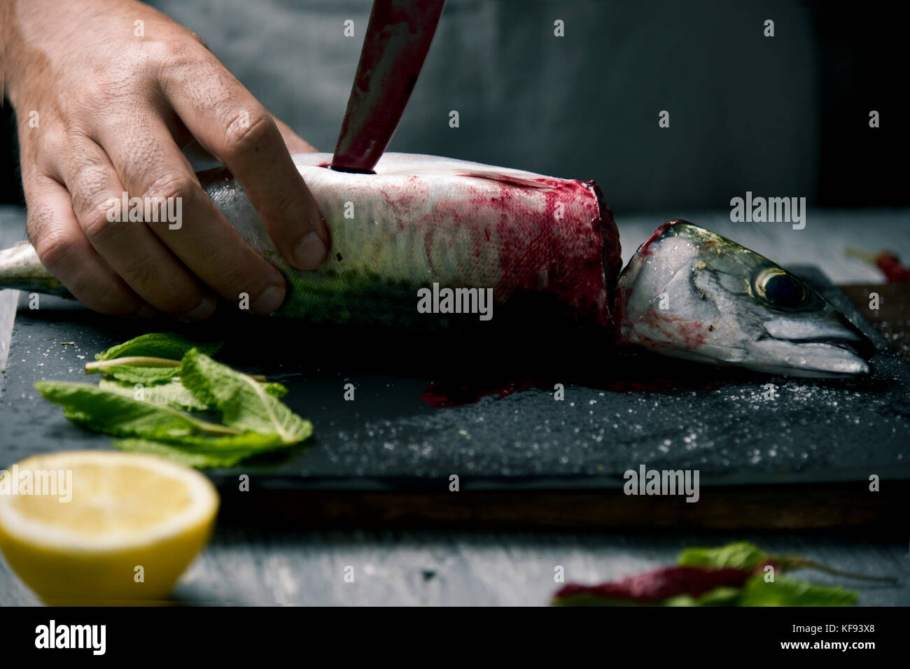 closeup of a young caucasian man cutting a raw fresh mackerel with a knife, on a slate tray placed on a rustic wooden - Stock Image