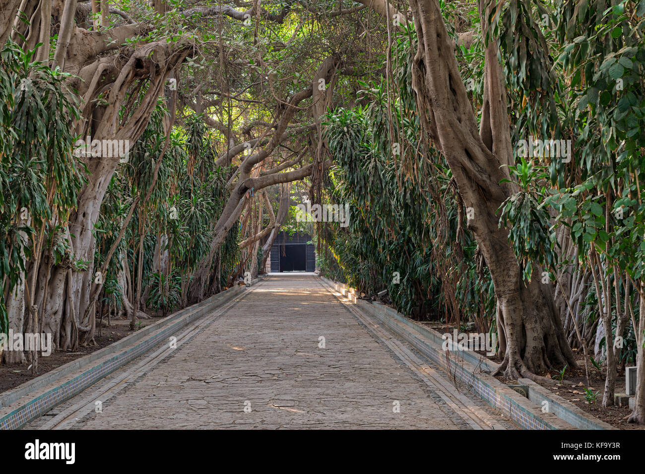 Passage through trees leading to closed door at the public park of The Manial Palace of Prince Mohammed Ali Tewfik, - Stock Image