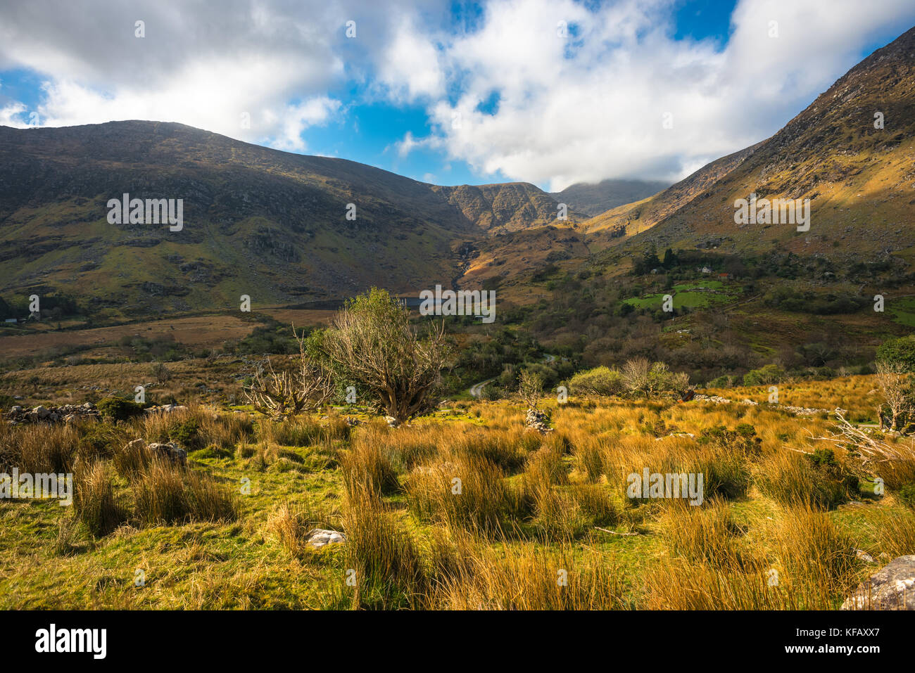 Irish landscape at Co. Kerry. - Stock Image