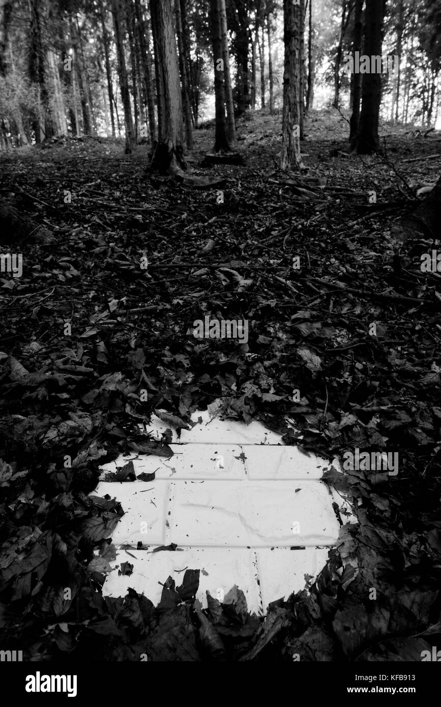 Land grabbing - Stock Image