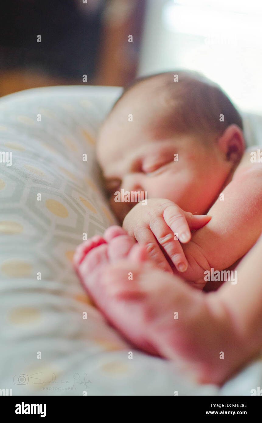 Newborn human baby asleep on a pillow - Stock Image