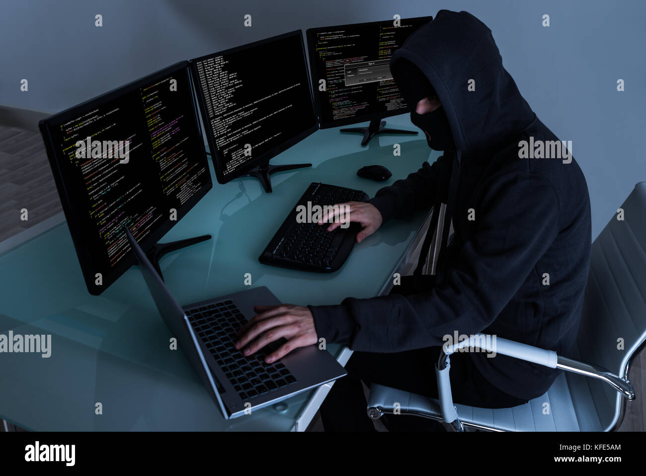 Computer hacking and software piracy