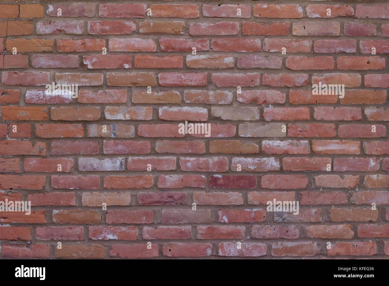 Coral Stone Wall Stock Photos Amp Coral Stone Wall Stock