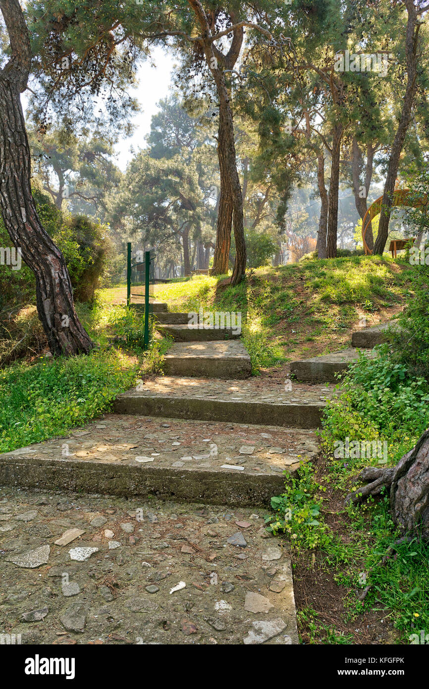 Ascending stone stairs surrounded by huge green tree and grass at a public natural park in spring time, Buyukada - Stock Image